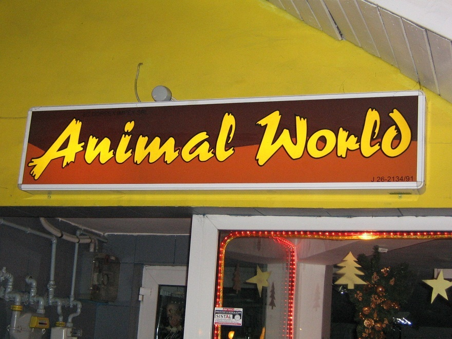 CASETE SI FIRME LUMINOASE Animal world