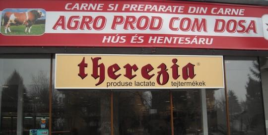 CASETE SI FIRME LUMINOASE Therezia (2)