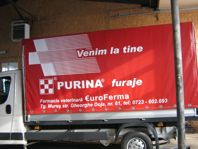 INSCRIPTIONARI VITRINE SI DECOR AUTO Purina