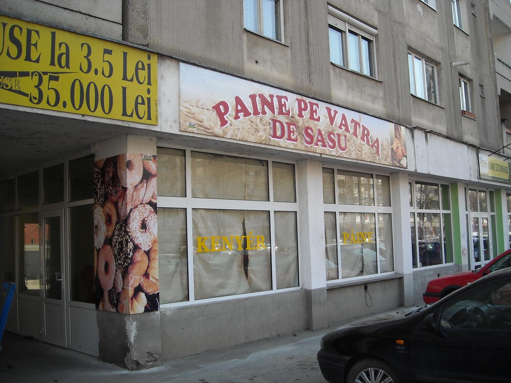 PRINTURI SI BANNERE Sasu (2)