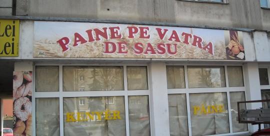 PRINTURI SI BANNERE Sasu (3)
