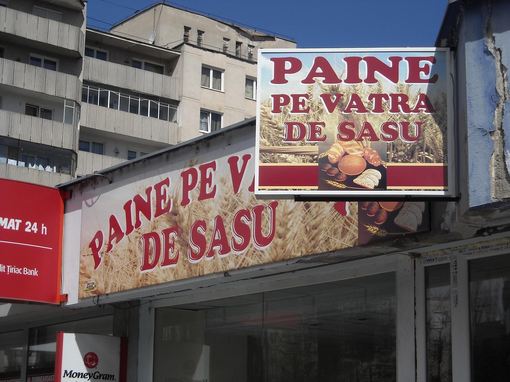 PRINTURI SI BANNERE Sasu