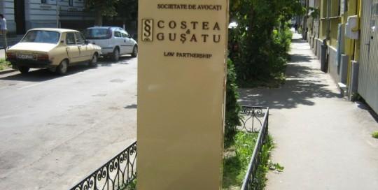 TOTEMURI LUMINOASE Costea and Gusatu